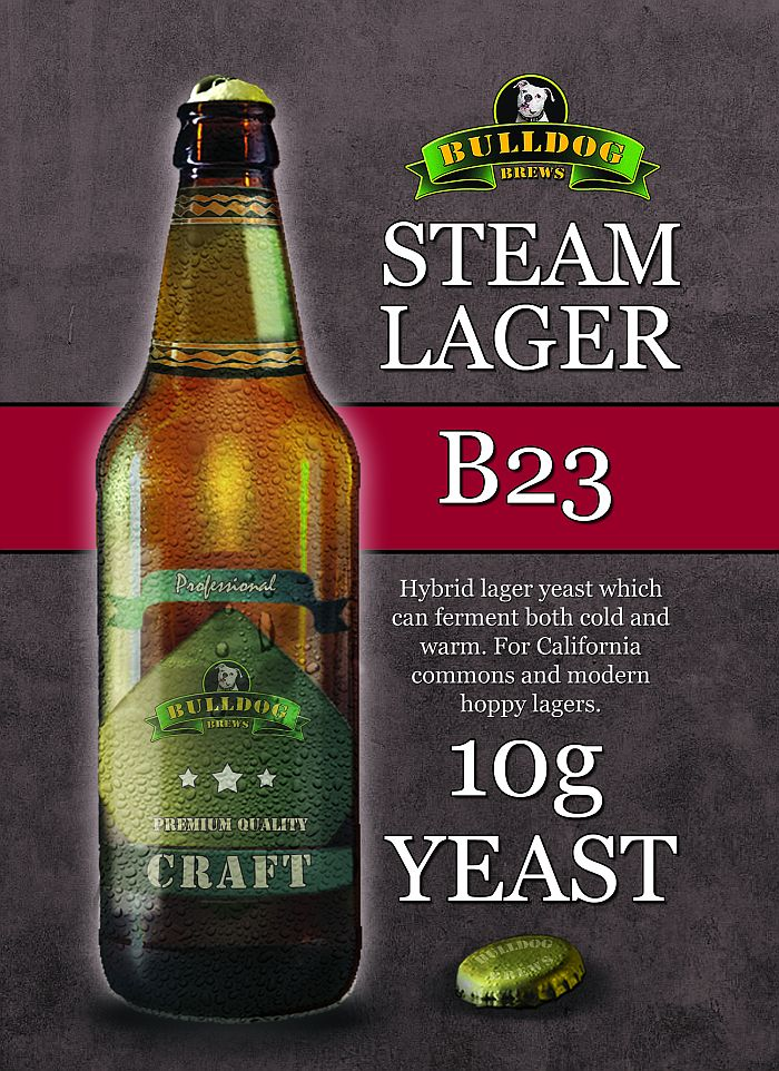 Kvasnice Bulldog B23 Steam Lager